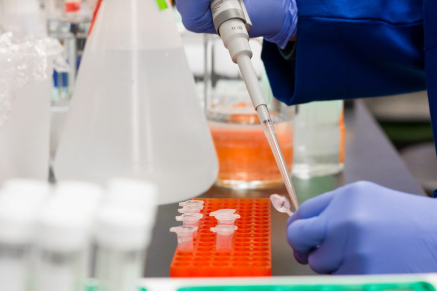 koronabirusa laborategia